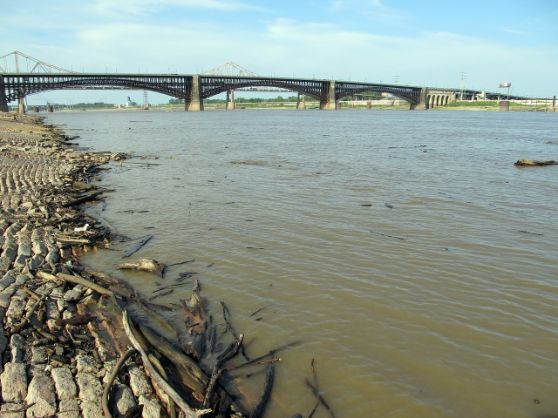 disturbed sediment are sources of physical contaminants
