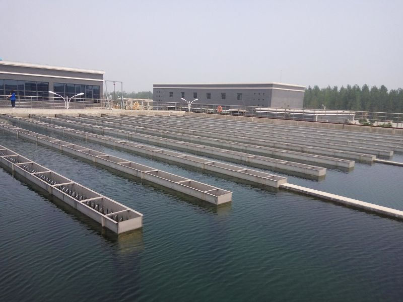 municipal water treatment with chloramine