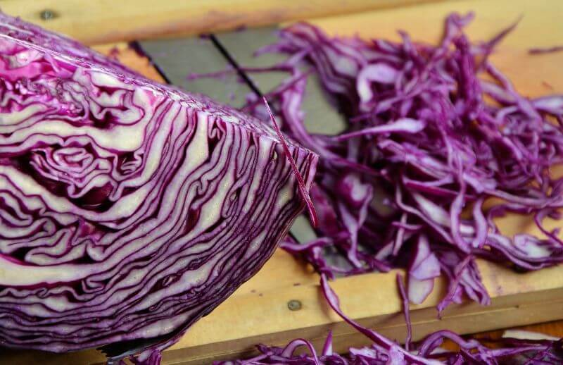 red cabbage ph test